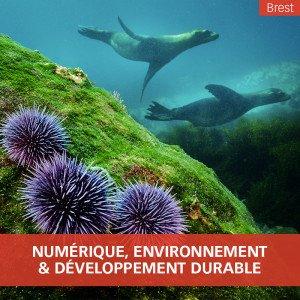 ingénieur numérique et environnement